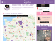 screenshot http://www.zenaba.com astuces, conseils de beauté afro
