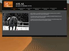 Aslal Arabians