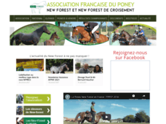 Association Française Poney New-Forest