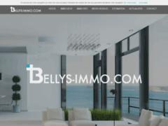 Consulter la fiche de Bellys Immo