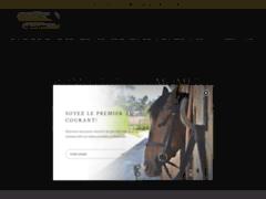 Sellerie en ligne boutik-equestre.com