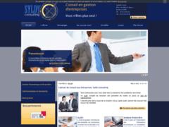 Détails : Cabinet de Conseil aux Entreprises Syldy