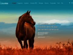 LA LOUVIERE - Equitation éthologique - 84