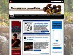 Culture champignons comestibles