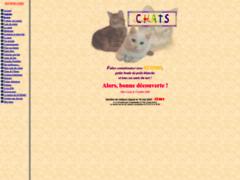 L'encyclopédie des chats