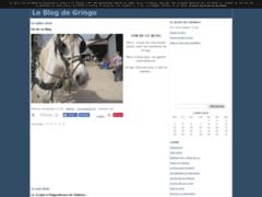 Le blog de Gringo