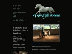 CT quarter horses