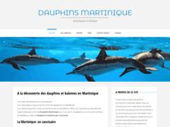 Observation des dauphins en Martinique