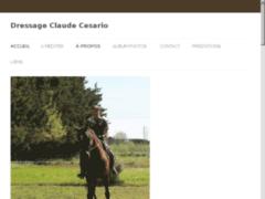 Http://dressage-chevaux-cesario.com