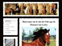 Elevage de Thouaré-Poneys-CSO