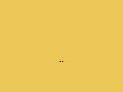 Elevage Etchegaia - Ecuries de l'ile Bragard