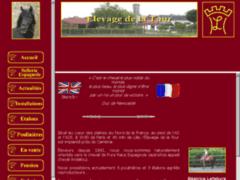Elevage de la Tour : Cheval andalou, cheval ibérique et pure race espagnol
