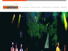 Création du site Internet de Facteur Soudain (Entreprise de Artiste musicien à LYON )
