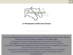 Fanequin.fr