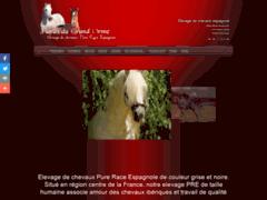 Elevage de Chevaux Pure Race Espagnole