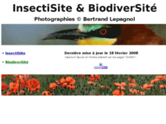 InsectiSite