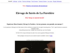 Elevage de furet - france