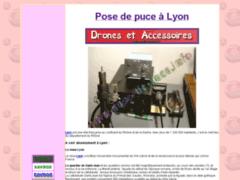 Pose de puce à Lyon