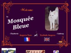 Chatterie de la mosquée bleue