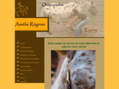 Ostéopathie équine Midi-Pyrénées