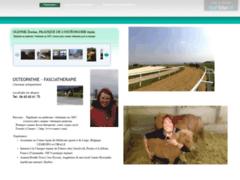 Veterinaire osteopathie chevaux
