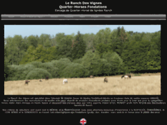 Elevage de Quarter-horse fondations