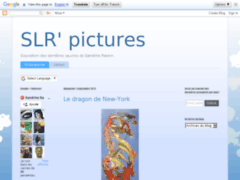 SLR pictures'