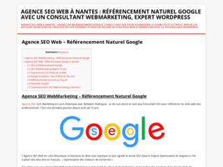 Agence web SEO à Nnates : un service de qualité