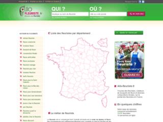 Capture du site http://www.allo-fleuriste.fr/