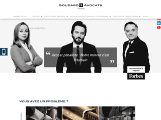 Maitre Goudard : avocat pénaliste à Paris