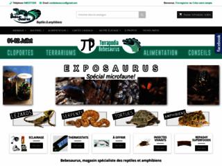 terrarium-pogona-bebesaurus-animalerie-specialisee-en-reptiles-a-lyon