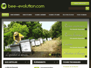 Bee-evolution