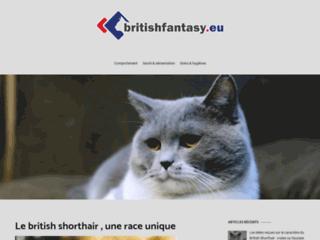 Détails : Blog sur le chat british shorthair