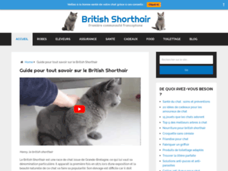 Aperçu du site British Shorthair