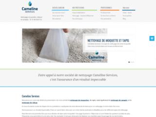 Détails : le service cameline-services.com