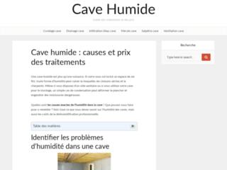 Détails : Cave Humide