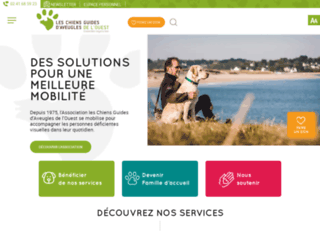 chiens-guides-d-aveugles