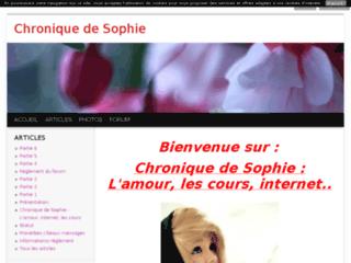 Chronique de Sophie: L'amour,les cours, internet.