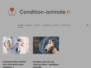 condition-animale