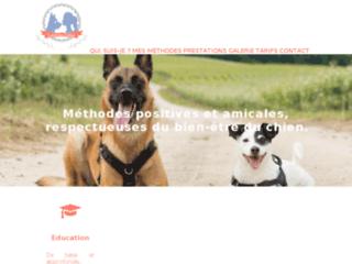 Educateur canin et comportementaliste dans la Marne