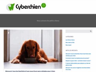 blog-d-information-sur-les-petits-chiens