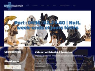 Vétérinaire Delvaux Etterbeek