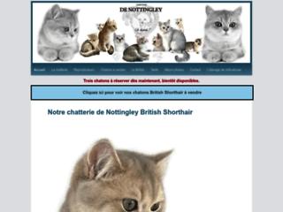 Aperçu du site De Nottingley