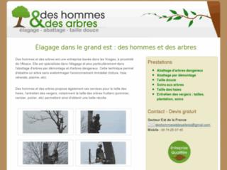 Capture du site http://deshommesetdesarbres.pagesperso-orange.fr/