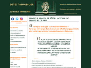 Aperçu du site Chasseur immobilier DETECTIMMOBILIER®