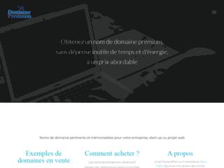 Aperçu du site Domaine Premium