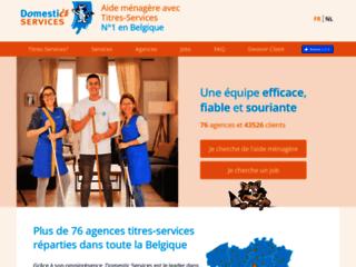 Détails : Domestic Services : l'expert du nettoyage