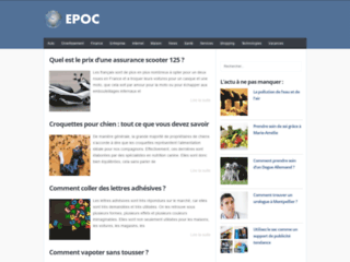Aperçu du site EPOC