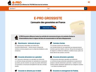 Aperçu du site E-Pro-Grossiste