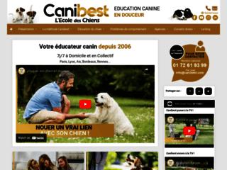 L'école des chiens à Paris sur http://www.ecoledeschiens.com